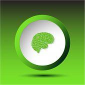 Brain. Plastic button. Raster illustration.