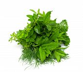 picture of crusher  - fresh herbs isolated on white background - JPG