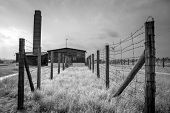 MAJDANEK, LUBLIN - JULY 13: Majdanek concentration camp on the outskirts of Lublin on July 13, 2013 in Poland.  More than 79,000 people were killed at Majdanek during the 34 months of its existence.