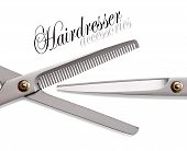 Scissors, Thinning Shear