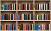 image of spines  - Books on a wooden shelfs - JPG