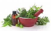 stock photo of pestle  - Mortar and pestle with fresh herbs and essential oil bottle - JPG