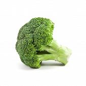 picture of raw materials  - raw broccoli isolated on a white background - JPG