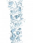 Isolated water bubbles on white background