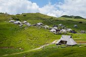 pic of velika  - Hills on Velika Planina - JPG