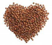 Uncooked Lentils Heart Isolated On White Background