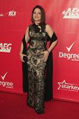 LOS ANGELES - JAN 24:  Gloria Estefan at the 2014 MusiCares Person of the Year Gala in honor of Caro