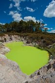 Incredibly green and highly toxic Devil's Bath crater lake at Wai-O-Tapu geothermal area, New Zealan