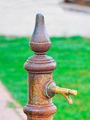 stock photo of spigot  - ra usty spigot in a green park - JPG