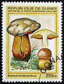 Postage Stamp Guinea 1995 Boletus Rhodoxanthus, Mushroom