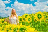 Beautiful woman with closed eyes of pleasure standing in fresh yellow sunflower fields, gorgeous picturesque landscape