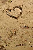Heart Shape Made Of Seaweed On Beach