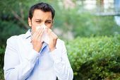 image of allergy  - Closeup portrait of young man in blue shirt with allergy or cold blowing his nose with a tissue looking miserable unwell very sick isolated outside green trees background - JPG
