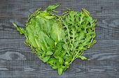 pic of sorrel  - A heart of sorrel arugula mint lemon balm and parsley on black wooden background - JPG