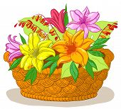 Basket with flowers lily