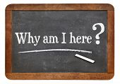 why am I here question  on a vintage slate blackboard