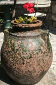 Old pottery in garden closeup