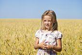 Little blonde girl in a wheat golden field
