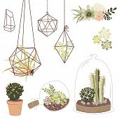 image of terrarium  - Vector set with succulents - JPG