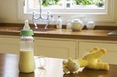 Closeup of a stuffed animal and baby bottle on kitchen counter