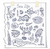 Funny Sea Life and Fish.Doodle set on school notebook