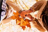 underneath view of couple holding autumn leaves