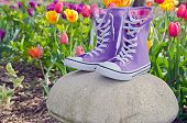 purple high top sneakers
