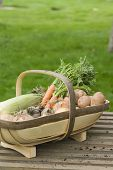 Closeup of basket of vegetables on wooden bench