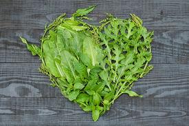 stock photo of sorrel  - A heart of sorrel arugula mint lemon balm and parsley on black wooden background - JPG