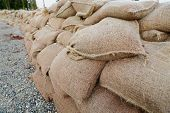 picture of sandbag  - A long wall of sandbags in place for flood protection - JPG