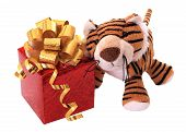 New-year tiger cub with gift.