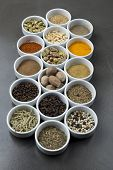 large collection of different spices and herbs isolated on dark background
