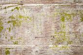 Old Grungy Plywood With Green Paint, Background Texture