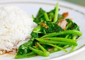 Chinese Broccoli Or Chinese Kale Fried With Crispy Pork Beside Steamed Rice.