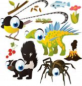 pic of bird paradise  - Vector set of isolated cute animals - JPG