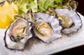 foto of oyster shell  - A restaurant of Oysters in the shell served with lemon on a bed of Rock Salt - JPG