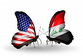 picture of iraq  - Two butterflies with flags on wings as symbol of relations USA and Iraq - JPG