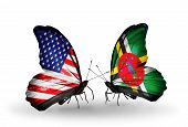 Two Butterflies With Flags On Wings As Symbol Of Relations Usa And Dominica