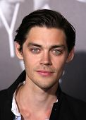 LOS ANGELES - FEB 08:  TOM PAYNE arrives to the
