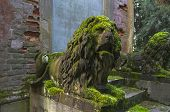 Moss-covered Stone Sculptures Of Lions.
