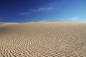 stock photo of wind blown  - A Peaceful desert landscape of dunes in the kalahari - JPG