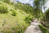 stock photo of ravines  - The Homole Ravine in Pieniny mountains Poland - JPG