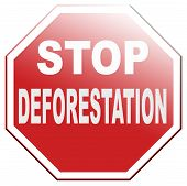 stock photo of deforestation  - stop deforestation safe our trees in the Amazon the African or Azian rainforest - JPG