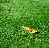 image of tilt  - orange spade in a green field - JPG