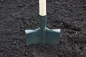 pic of spade  - Shovel on field digging hole with spade in field - JPG
