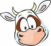 pic of cow head  - cow head cartoon  - JPG