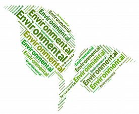 pic of ecosystem  - Eco Friendly Showing Go Green And Ecosystem - JPG