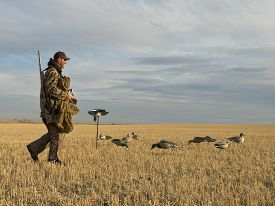 pic of hunter  - A Hunter with his decoys out duck hunting - JPG