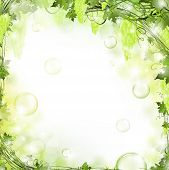 foto of grape-vine  - illustration of nature floral air background with bubbles - JPG