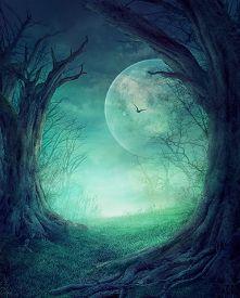 stock photo of moon silhouette  - Halloween design  - JPG